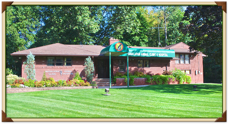 manalapan township, nj veterinary